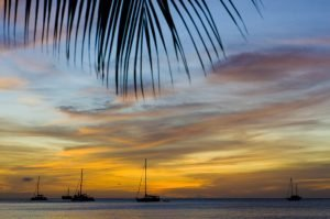sunset with boats and palm trees