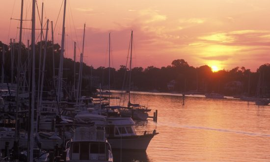 boats docked at sunset in annapolis