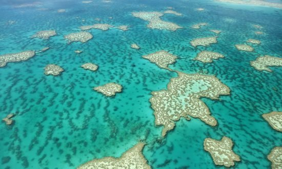 Zeilen Great Barrier Reef