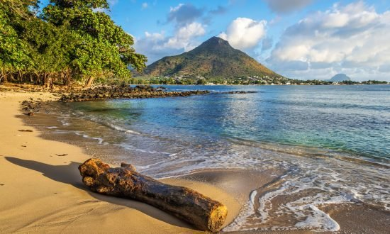 log on the beach with mountain in back in Mauritius