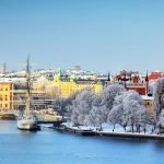 snow covered trees and buildings in stockholm