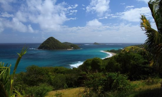 Levera National Reserve Park in Sugar Loaf island grenada