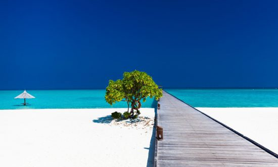 long dock and tree on the beach in Maldives with umbrella in water