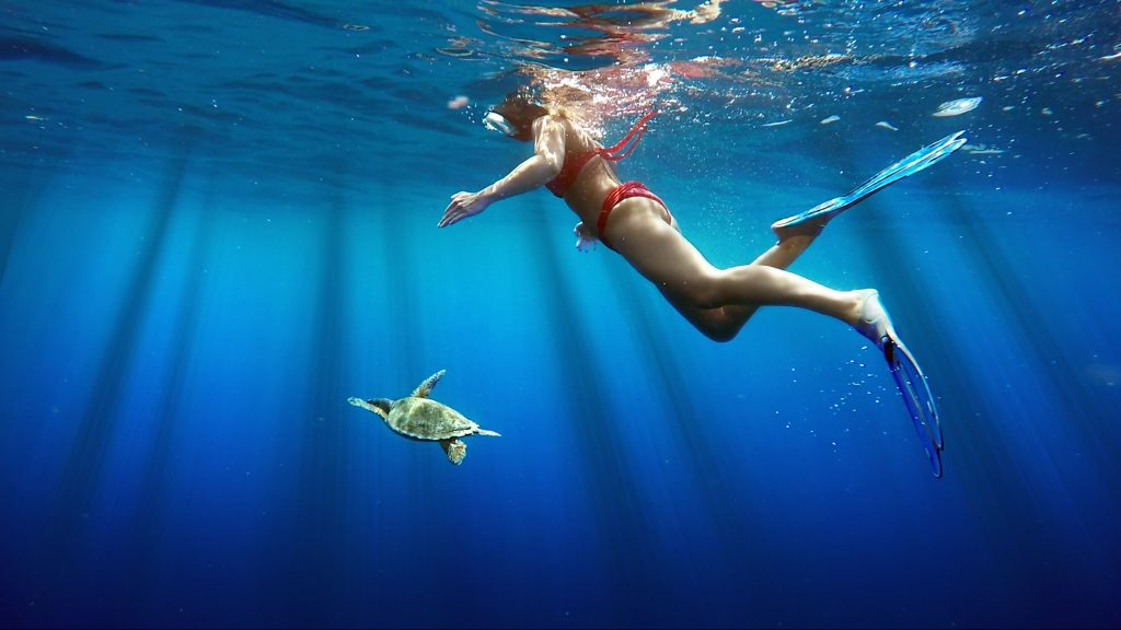 meilleures bases snorkeling dream yacht charter