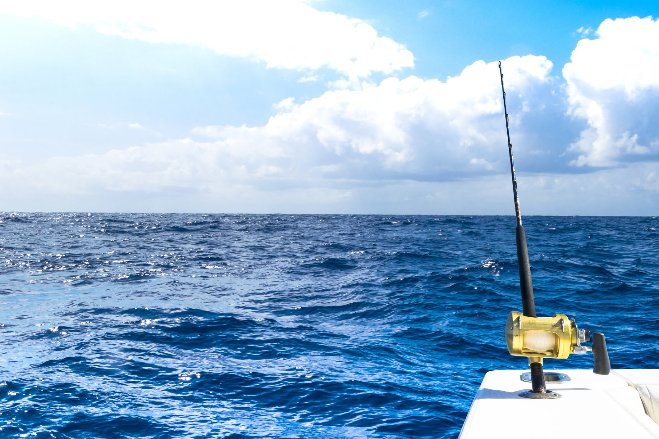 Everything you need to know about fishing