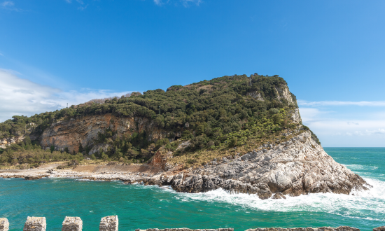 Palmaria Island's rugged shore
